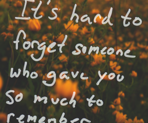 quotes, forget, and flowers image