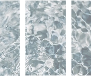 header, twitter, and water image