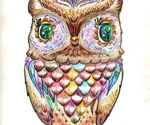 drawing and owl image