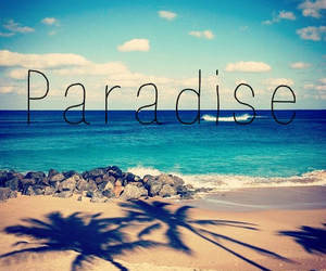 beach, holidays, and paradise image