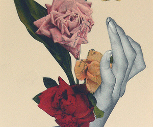 rose and Collage image