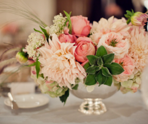 pink, beautiful, and flowers image