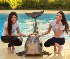 dolphin, kylie, and jenner image