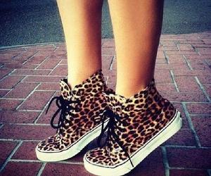 shoes, vans, and leopard image