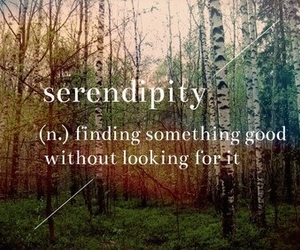 serendipity, quote, and good image