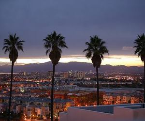 city, palm trees, and los angeles image