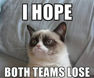 grumpy cat and funny image