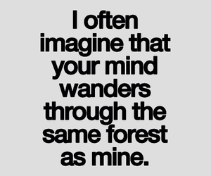 quote, forest, and wander image