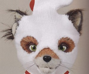 fantastic mr fox and fox image