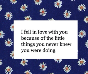 quote, love, and little things image