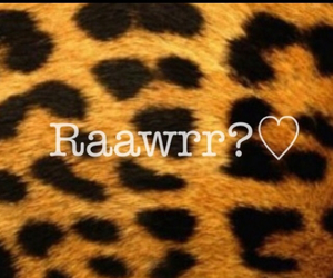 hintergrund, leopard, and raawwrr image
