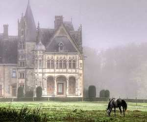horse, castle, and france image