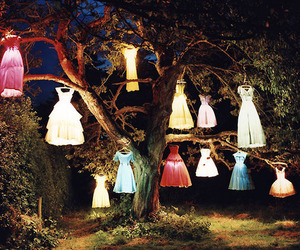 dress, tree, and light image