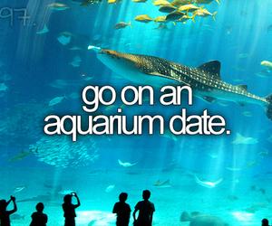 date, before i die, and aquarium image