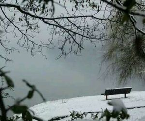 bench, cold, and lake image