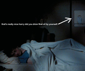 harry potter, owl, and funny image