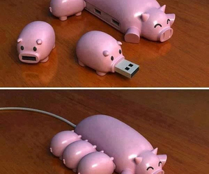 pig, pink, and usb image