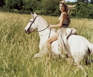 ralph lauren and fashion. horse image