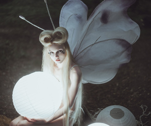 butterfly, white, and fairy image