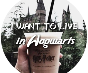Dream, harry potter, and hogwarts image