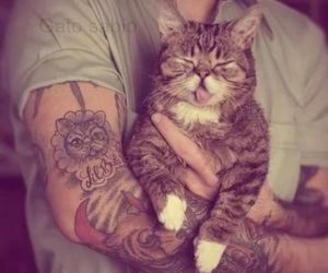 cat, tattoo, and boy image