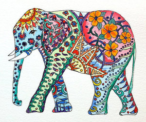 elephant, colors, and animal image