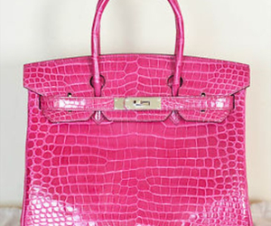 hermes, pink, and cocodrile image