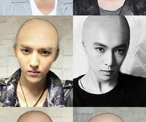 bald, Chen, and exo image
