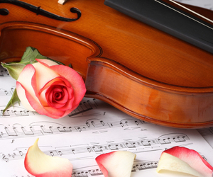 violin, music, and rose image