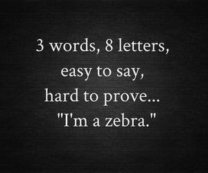 zebra, funny, and quote image