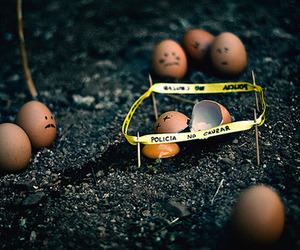 eggs, crime, and crime scene image