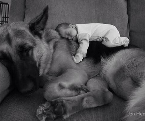 baby, cuteness, and friendship image