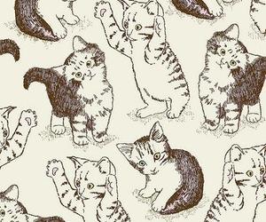cat, kitty, and kitten image