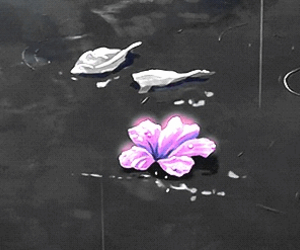 flowers and gif image