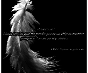 hush hush, patch, and patch cipriano image