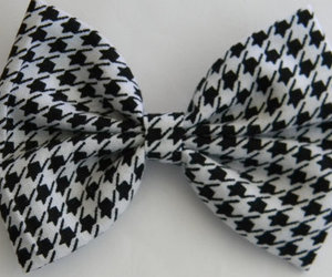 accessories, black and white, and bows image