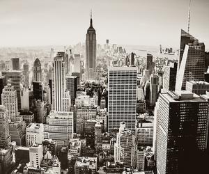 new york and skyscraper image