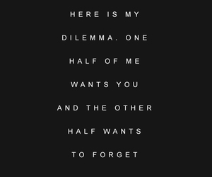 quotes, dilemma, and forget image