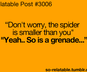 spider, funny, and Grenade image