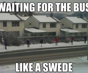sweden, bus, and fun image