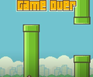 flappy bird, funny, and game image