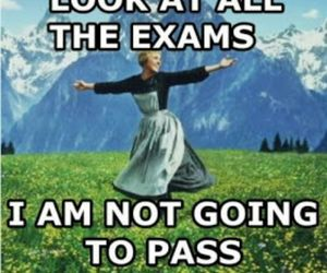 exams, funny, and sound of music image