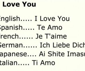 french, love, and german image