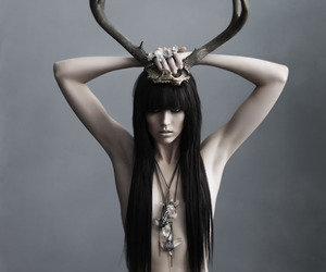 antlers, grey, and long hair image