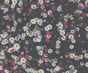 band, flowers, and grunge image