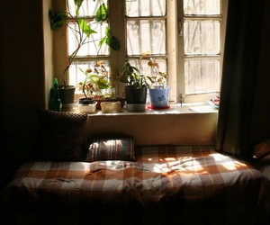 bed, light, and plants image