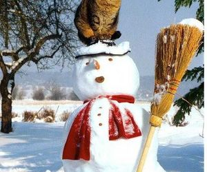 cat, winter, and snowman image