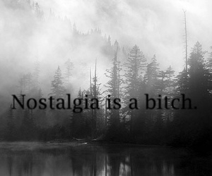 bitch, is, and nostalgia image