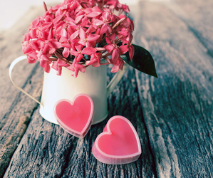 boyfriend, flowers, and hearts image