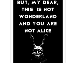 alice in the wonderland, black, and bunny image